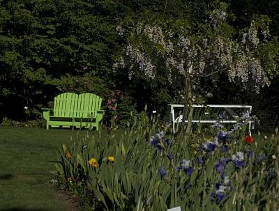 Photograph - Garden Bench Green by Sara Stevenson