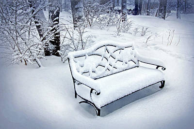 Photograph - Garden Bench In Winter by Carolyn Derstine