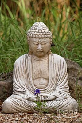 Photograph - Garden Buddha And Bluebonnets by David Cutts
