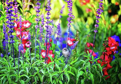 Photograph - Garden Buffet by Lynn Bauer