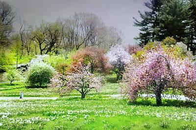 Photograph - Garden Canvas  by Diana Angstadt