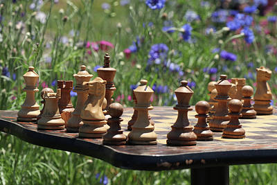 Photograph - Garden Chess by Cate Franklyn