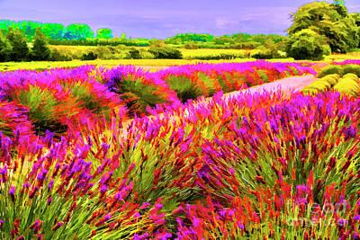 Photograph - Garden Color by Rick Bragan