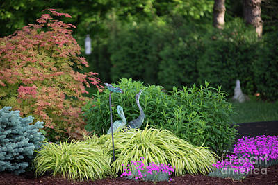 Photograph - Garden Colors by David Bearden
