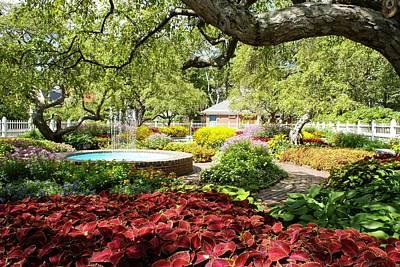 Photograph - Garden Colors by Lois Lepisto
