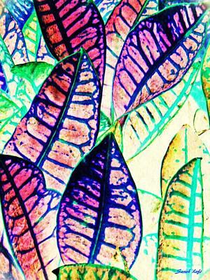 Photograph - Garden Croton 2 Color Inversion  by Sarah Loft