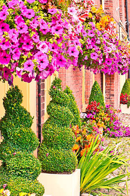 Hanging Basket Photograph - Garden Display by Tom Gowanlock