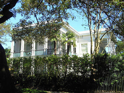 Photograph - Garden District 39 by Ron Kandt