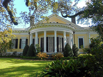 Photograph - Garden District 7 by Ron Kandt