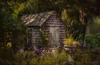 Photograph - Garden D'light by Robin-Lee Vieira