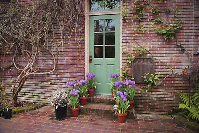 Photograph - Filoli Garden Door by Patricia Dennis