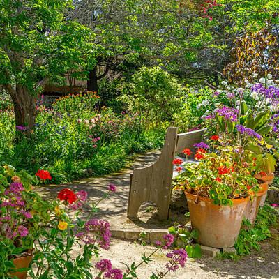 Photograph - Garden Dream by Derek Dean