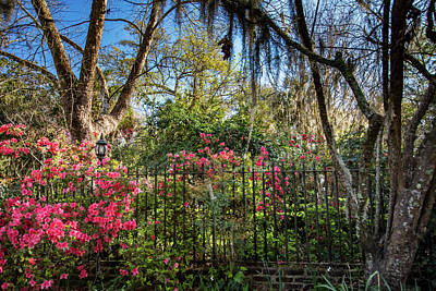Photograph - Garden Fence by Crystal Wightman