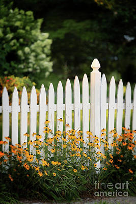 Photograph - Garden Fence by Nicki McManus