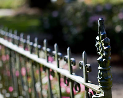 Wrought Iron Fence Photograph - Garden Fence by Rebecca Cozart