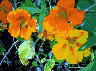 Garden Flavor Art Print