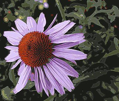 Echinacea Original by Arun Sarin