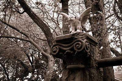 Photograph - Garden Gargoyle  by Toni Hopper