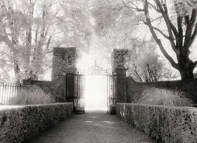 Garden Gate Art Print by Michael Hudson