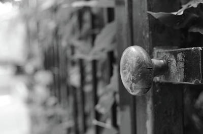 Photograph - Garden Gate by Miguel Winterpacht