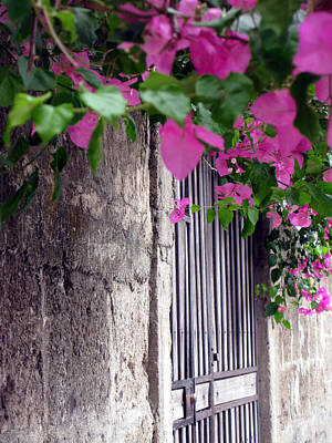 Photograph - Garden Gate by Sarah Hornsby