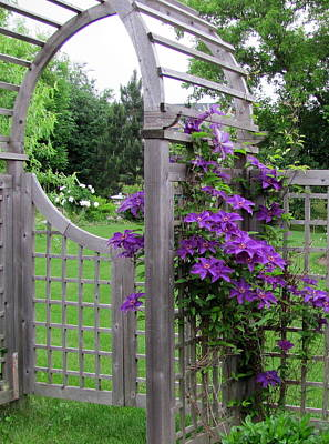 Photograph - Garden Gate With Clematis by Douglas Pike
