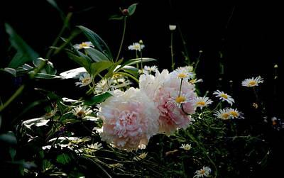 Photograph - Garden by Gillis Cone