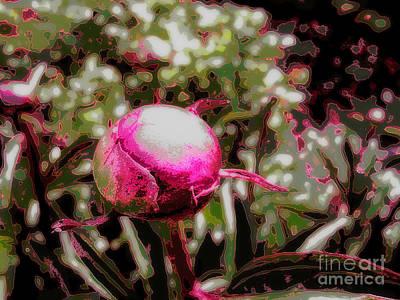 Photograph - Garden Globe by Eve Penman