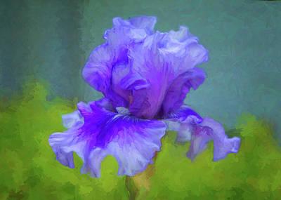 Photograph - Garden Goddess - Iris by Nikolyn McDonald