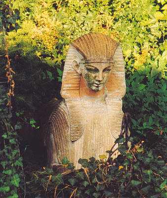 Photograph - Garden Guardian by Jan Amiss Photography