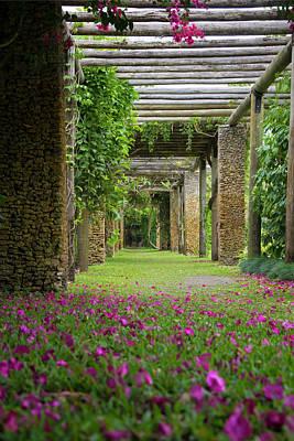 Photograph - Garden Isle by Vanessa Valdes