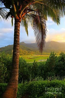 Achieving - Garden Isle Overlook by DJ Florek