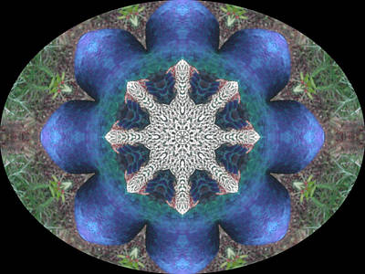 Digital Art - Garden Kaleidescope  by Dorothy Berry-Lound