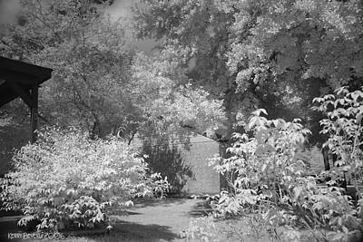 Photograph - Garden by Kerry Beverly