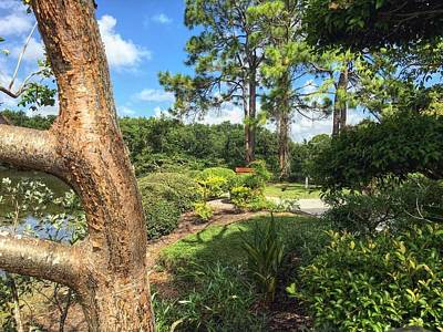Photograph - Garden Landscape by Sandy Taylor