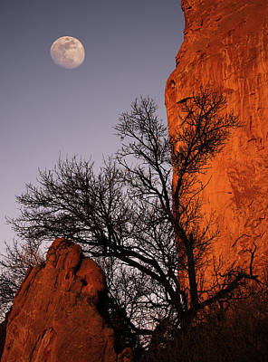 Colorado Springs Photograph - Garden Moon by Darren White