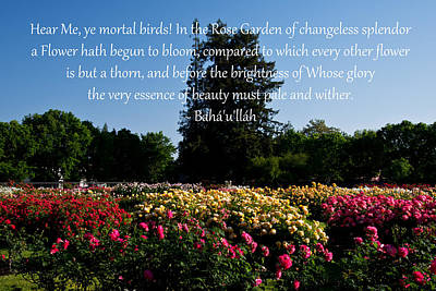 Photograph - Garden Of Changeless Splendor by Baha'i Writings As Art