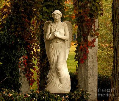 Photograph - Garden Of Eden by Heather King