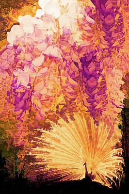 Photograph - Garden Of Gold by Debra and Dave Vanderlaan