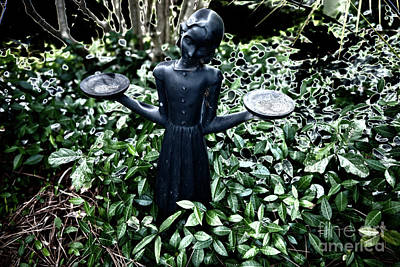 Photograph - Garden Of Good And Evil by Dale Powell