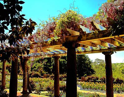 Garden Of Paradise Original
