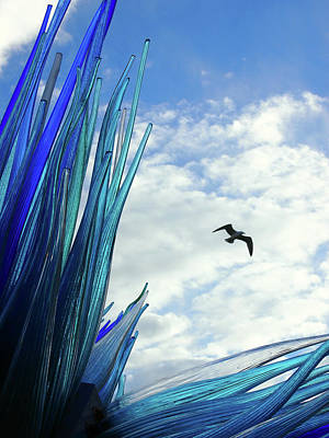 Murano Glass Photograph - Garden Of The Air by Philip Openshaw