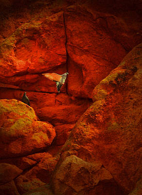 Photograph - Garden Of The Gods 4 by Emily Stauring