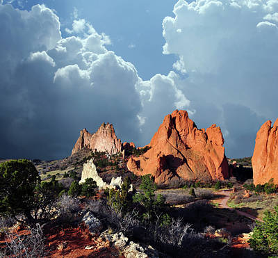 Photograph - Garden Of The Gods Beauty by John Hoffman