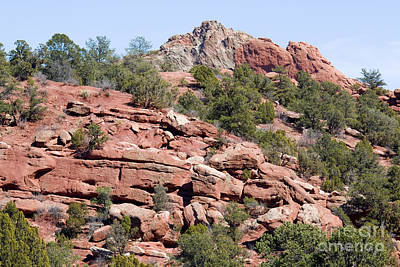 Steven Krull Royalty-Free and Rights-Managed Images - Garden of the Gods Park by Steven Krull