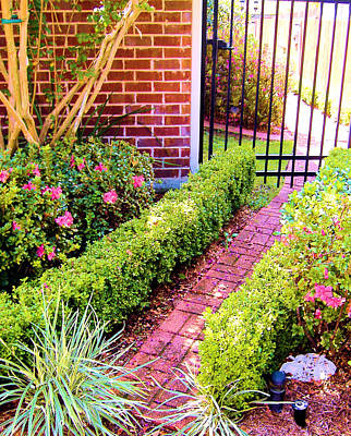 Art Print featuring the photograph Garden Path by Diane Ferguson