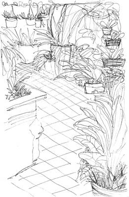 Conservatory Drawing - Garden Path by Elizabeth Thorstenson