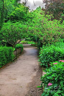 Photograph - Garden Path by Elvis Vaughn
