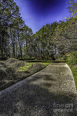 Photograph - Garden Path In Spring by Ken Frischkorn