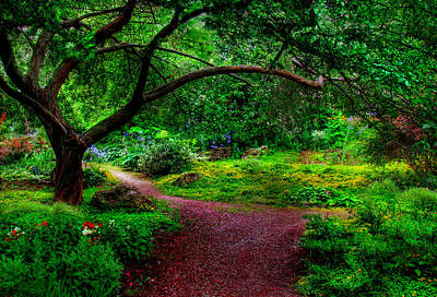 Summerland Photograph - Garden Path by John Poon